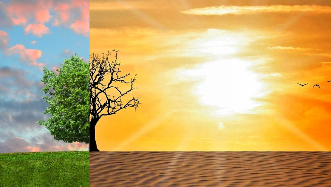 Pourquoi est-il crucial de limiter le réchauffement climatique ?